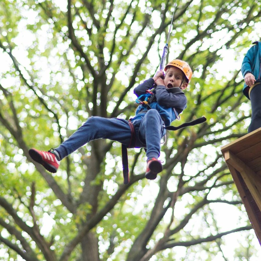 Child on zip wire in trees