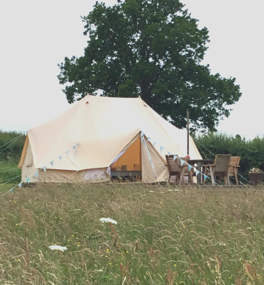 Bell Tent on deck with tree behind and in field