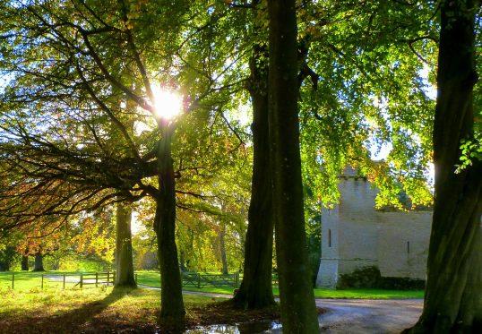 Croft castle through trees with sun peeking through