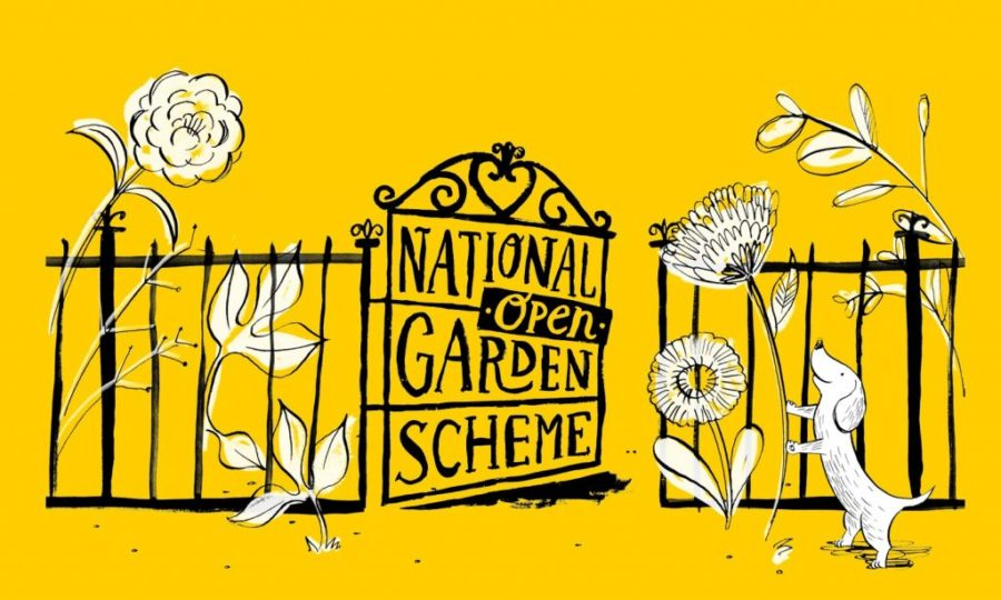 National Garden Scheme logo, black gate with fence with white flowers on a yellow background