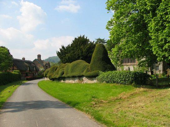 Brampton Bryan with lane and hedges
